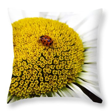 Ladybug Ladybug Fly Away Home Throw Pillow by Rhonda McDougall