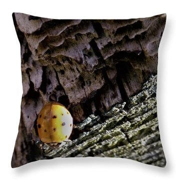 Ladybug On A Log Throw Pillow