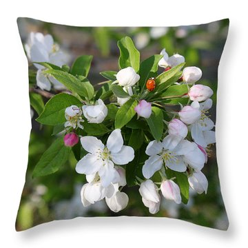 Ladybug On Cherry Blossoms Throw Pillow