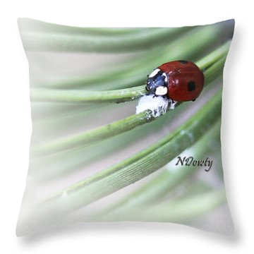 Ladybug On Pine Throw Pillow