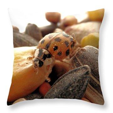 Ladybug On The Run Throw Pillow