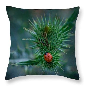 Ladybug On Thistle Throw Pillow