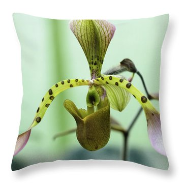 Throw Pillow featuring the photograph Lady's Slipper Orchid by Cristina Stefan