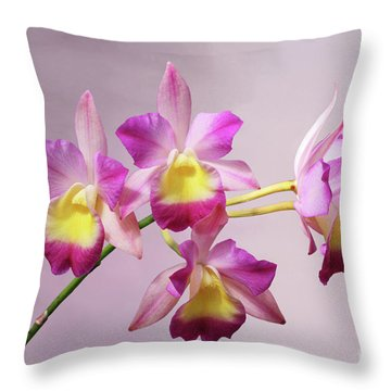 Laeliocatonia Hybrid Orchids V2 Throw Pillow
