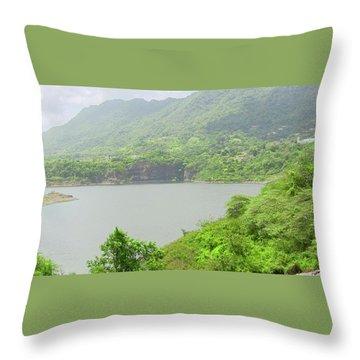Lago Toa Vaca Throw Pillow