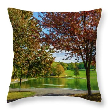 Lagoon Park In Montreal Throw Pillow