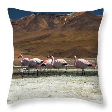 Laguna Colorada, Andes, Bolivia Throw Pillow by Gabor Pozsgai
