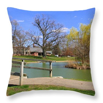 Lake At Schiller Park Throw Pillow by Laurel Talabere