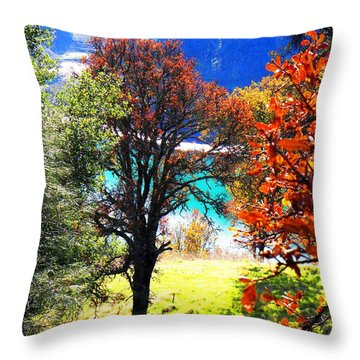 Lake Berryessa Throw Pillow