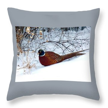 Throw Pillow featuring the photograph Lake Country Pheasant by Will Borden