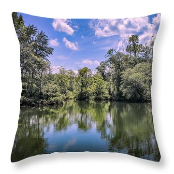 Lake Cove Throw Pillow