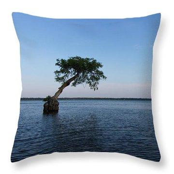 Lake Disston Cypress #2 Throw Pillow by Paul Rebmann