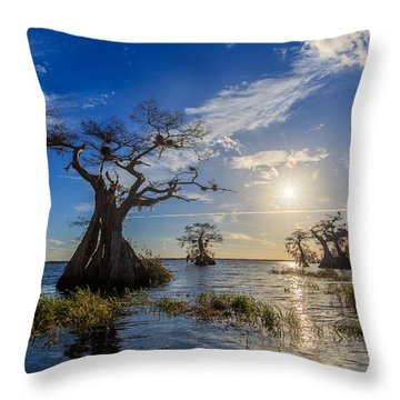 Lake Disston Cypress Paradise Throw Pillow