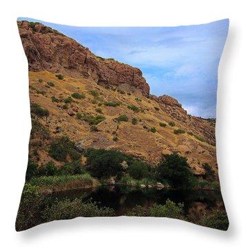 Lake Eleanor Throw Pillow