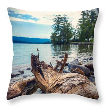 Lake George Palette Throw Pillow