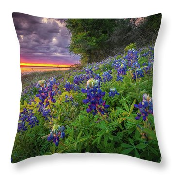 Lake Grapevine Twilight Throw Pillow