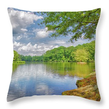 Lake Haigler 2014 01 Throw Pillow