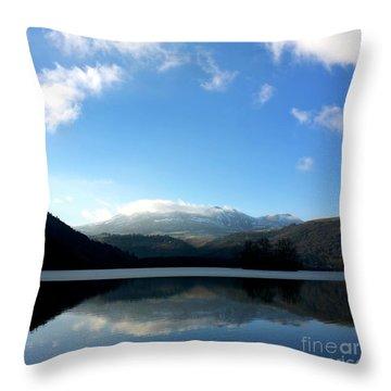 Lake In Auvergne Throw Pillow by Bernard Jaubert