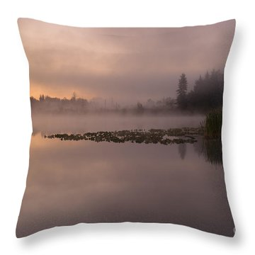 Lake Marsh Throw Pillow