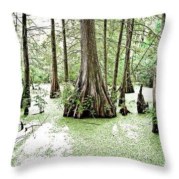 Lake Martin Swamp Throw Pillow by Scott Pellegrin