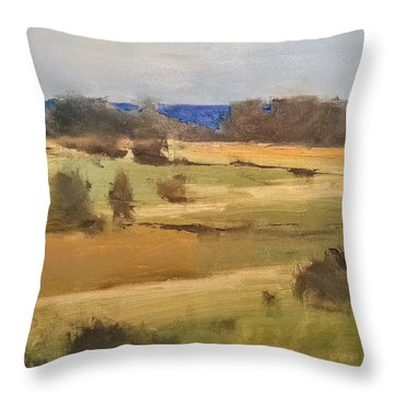 Lake Michigan Across The Field Throw Pillow