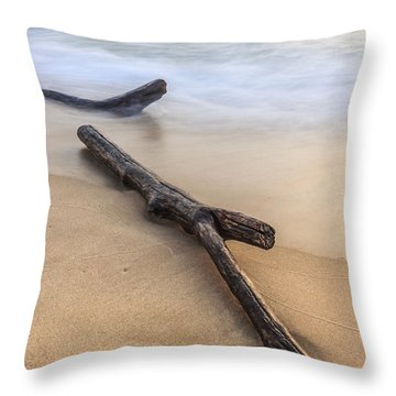 Throw Pillow featuring the photograph Lake Michigan Beach Driftwood by Adam Romanowicz