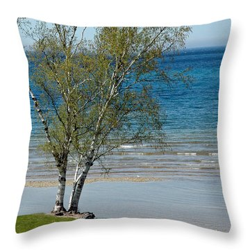 Throw Pillow featuring the photograph Lake Michigan Birch Tree Bench by LeeAnn McLaneGoetz McLaneGoetzStudioLLCcom