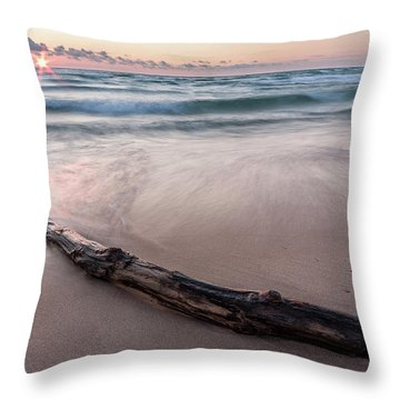 Throw Pillow featuring the photograph Lake Michigan Driftwood by Adam Romanowicz