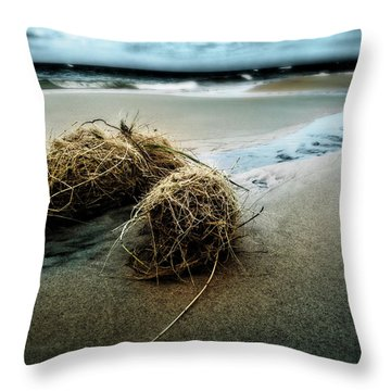 Lake Michigan Tumbleweed Throw Pillow