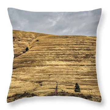 Lake Missoula Throw Pillow