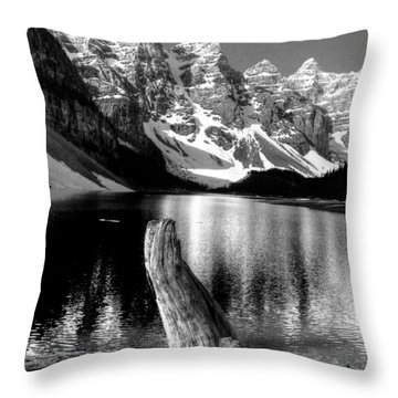 Lake Moraine Drift Wood Throw Pillow