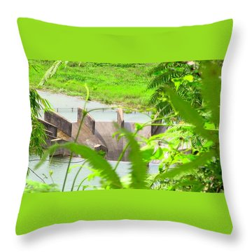 Lake Overflow Throw Pillow