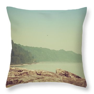 Throw Pillow featuring the photograph Lake Park Port Washington by Joel Witmeyer