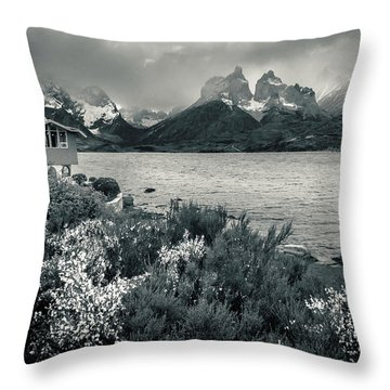Lake Pehoe In Black And White Throw Pillow by Andrew Matwijec