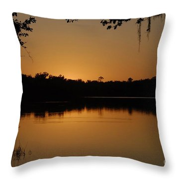 Lake Reflections Throw Pillow by David Lee Thompson