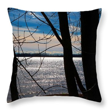 Throw Pillow featuring the photograph Lake Romance by Valentino Visentini