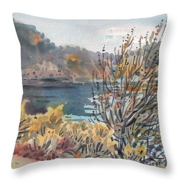 Lake Roosevelt Throw Pillow by Donald Maier