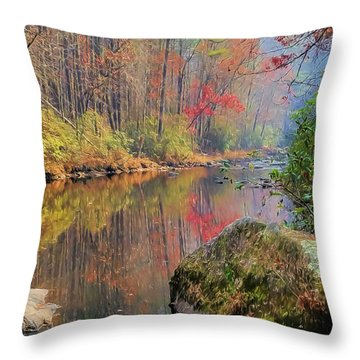 Chattooga Paradise Throw Pillow by Steven Richardson