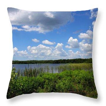 Lake Tarpon Throw Pillow by Barbara Bowen