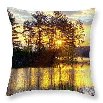 Lake Tiorati Golden Sunrise Throw Pillow