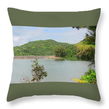 Lake View Throw Pillow
