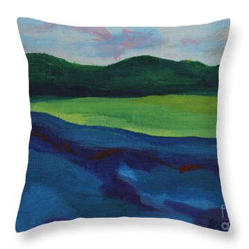 Lake Visit Throw Pillow