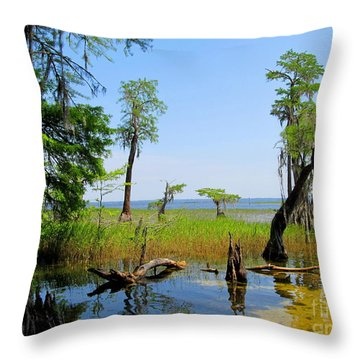 Lake Waccamaw Nc Throw Pillow