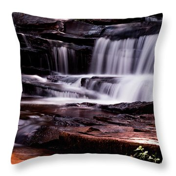 Lake Waterfall Throw Pillow