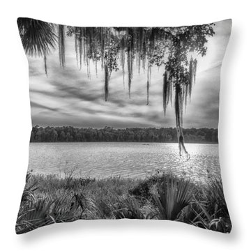 Throw Pillow featuring the photograph Lake Wauberg   by Howard Salmon