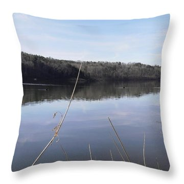 Lake Zwerner Early Spring Throw Pillow