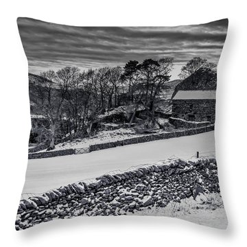 Lakeland Barn Throw Pillow