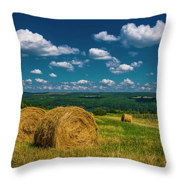 Throw Pillow featuring the photograph Lakeside Hayfield I by Steven Ainsworth