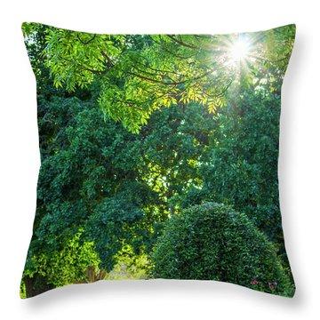 Lakeside Peace  Throw Pillow
