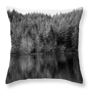 Lakeside Retreat Throw Pillow